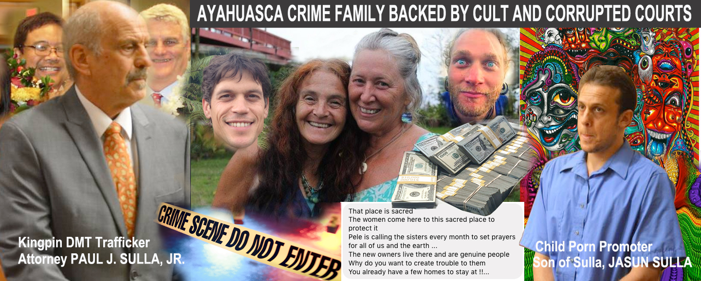 ayahuasca burn outs
